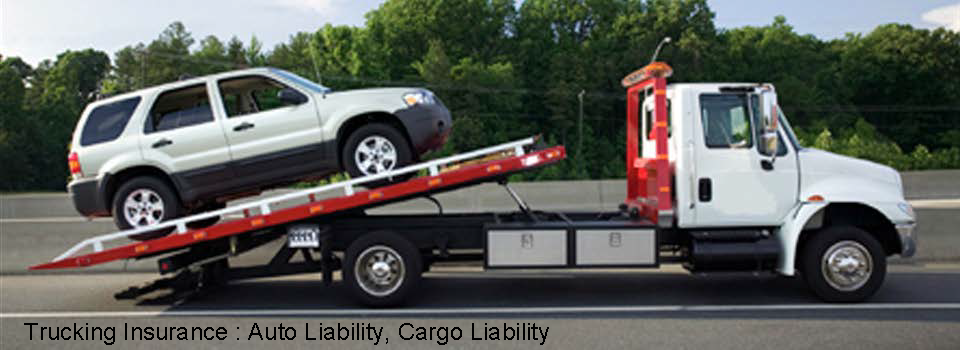 car-carrier
